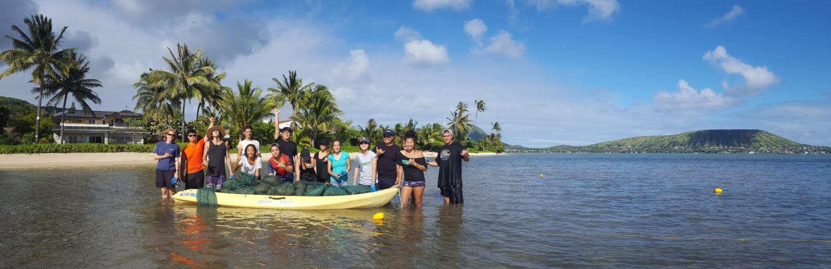 Community volunteers assist with removing invasive alien algae from Maunalua Bay